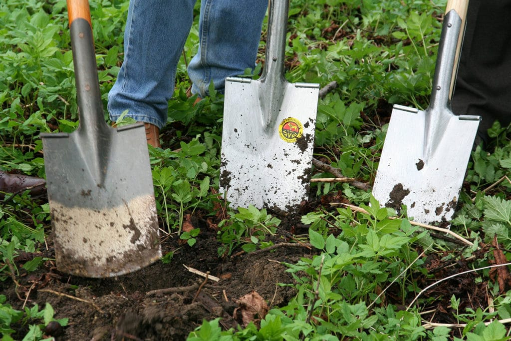 Picture of: How To Keep Your Garden Beds And Mulch Beds Looking Sharp Kinsmen Lawn Serving Lancaster County Homeowners