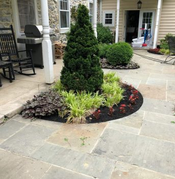 Landscaping (1)